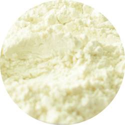 Shine Reduction Oil Control Primer Finishing Powder (Southern Magnolia Mineral Cosmetics)