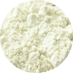 Праймер Perfection Powder Poreless (Southern Magnolia)